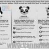 Thuật toán Zebra là gì và cách thức hoạt động